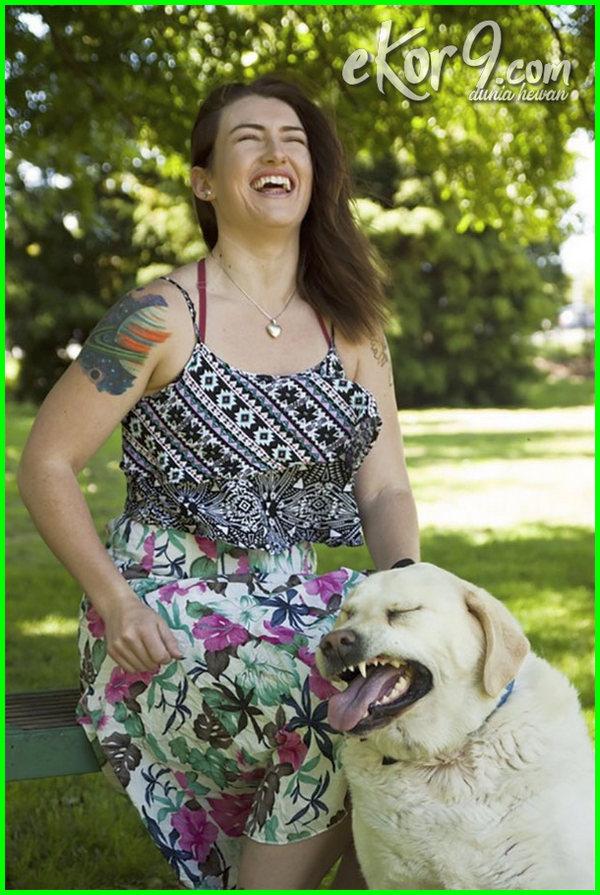 foto anjing lucu dan menggemaskan, anjing nyegir
