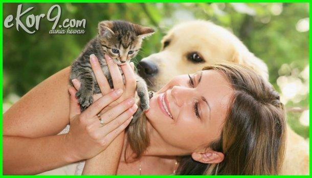 sebutkan manfaat memelihara hewan peliharaan, apa manfaat memelihara hewan peliharaan, keuntungan memelihara hewan di rumah, manfaat memelihara binatang di rumah, manfaat memelihara binatang kesayangan, manfaat memelihara hewan kucing, manfaat memelihara binatang kucing, manfaat memelihara hewan peliharaan, manfaat memelihara hewan di rumah, manfaat memelihara hewan dalam islam, manfaat memelihara hewan menurut islam, manfaat memelihara hewan kesayangan