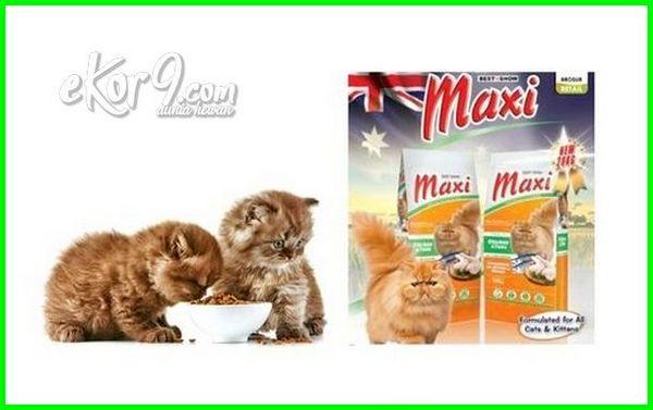 merk makanan kucing dan manfaatnya, merk makanan kucing persia dan harganya, merk makanan kucing murah dan berkualitas, merk makanan kucing paling disukai, merk makanan kucing terbaik di dunia, merk makanan kucing yang enak, merk makanan kucing dan fungsinya, makanan kucing merk first choice, merk makanan kucing yg bikin gemuk, merk makanan untuk kucing hamil, merk makanan yang bagus untuk kucing hamil