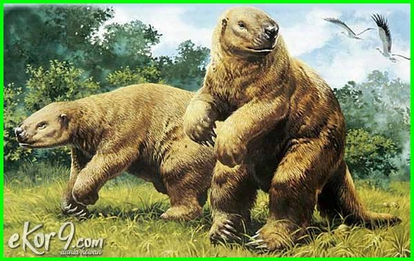 kungkang kukang raksasa, hewan punah yang ditemukan kembali 2015-2018-2021, hewan punah yang akan dihidupkan kembali, hewan punah ada kembali, hewan punah yang ada kembali, hewan punah yang berhasil dihidupkan kembali