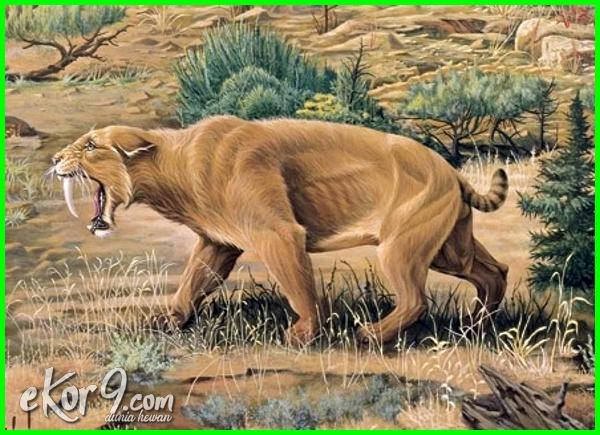 hewan punah yang dihidupkan kembali, hewan punah yg hidup kembali, hewan punah yang ditemukan kembali 2015-2018-2021, hewan punah yang akan dihidupkan kembali, hewan punah ada kembali, hewan punah yang ada kembali, hewan punah yang berhasil dihidupkan kembali
