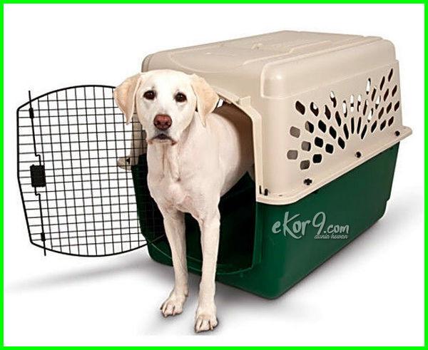 kandang anjing dalam perjalanan, kandang anjing yang bisa dibawa, kandang anjing untuk travel