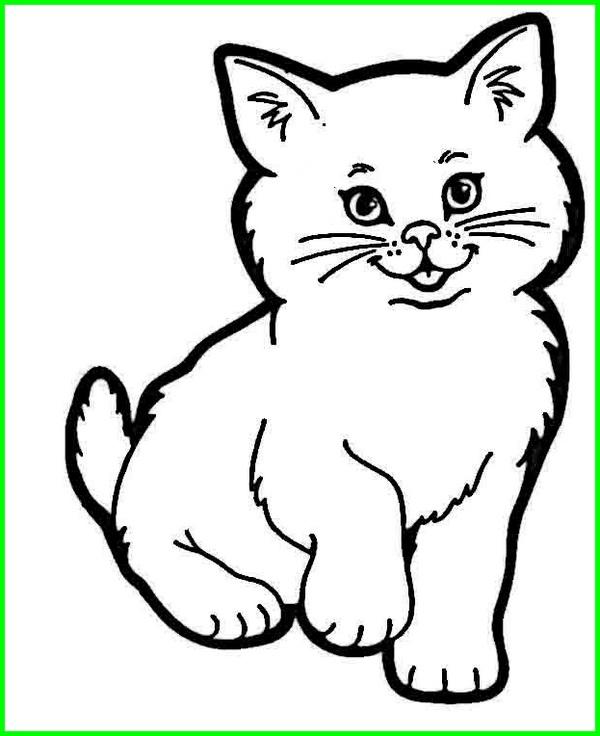 Gambar Kucing Lucu Imut Dan Paling Menggemaskan Sedunia Dunia Fauna Hewan Binatang Tumbuhan