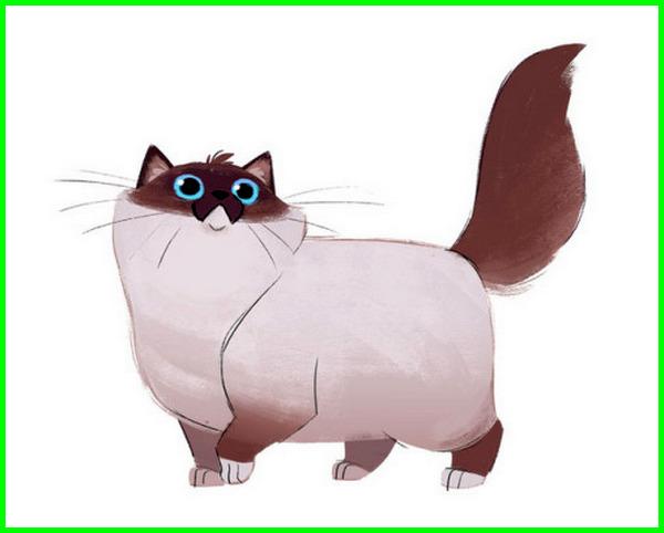 Gambar kucing animasi lucu paling lucu keren terbaru