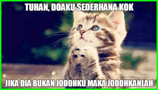 editan kucing berdoa
