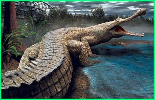 dinosaurus buaya terbesar, buaya dinosaurus di australia, dinosaurus vs buaya raksasa, dinosaurus mirip buaya
