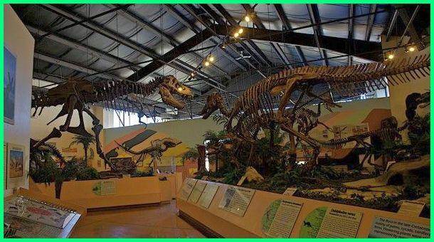 nama nama museum dinosaurus