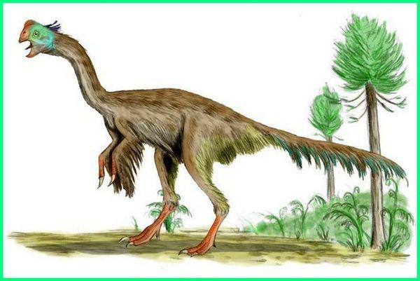 burung dinosaurus namanya, burung dinosaurus yang masih hidup, burung dinosaurus di papua, dinosaurus jenis burung, gambar dinosaurus burung, dinosaurus jenis burung paling terbesar di dunia yang pernah ada