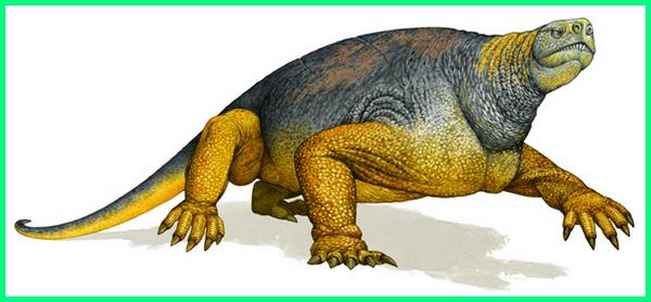 fosil dinosaurus terbesar ditemukan, fosil dinosaurus terbesar di dunia, fosil dinosaurus terbesar, foto dinosaurus terbesar