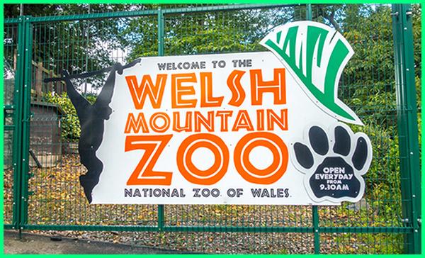 kebun binatang dengan hewan terlengkap di dunia