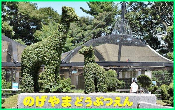 kebun binatang terbaik di jepang, kebun binatang bahasa jepang, nama kebun binatang di jepang, bahasa jepang kebun binatang, poster bahasa jepang kebun binatang, kebun binatang terbesar di jepang