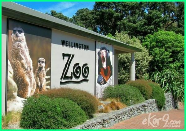 daftar kebun binatang terbesar di dunia