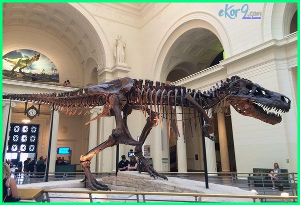 museum dinosaurus di amerika, b dagtrip dinosaurus museum, dinosaurus museum expo, foto museum dinosaurus, museum geologi dinosaurus, gambar museum dinosaurus, dinosaurus di museum geologi, letak museum dinosaurus, wa museum dinosaurs