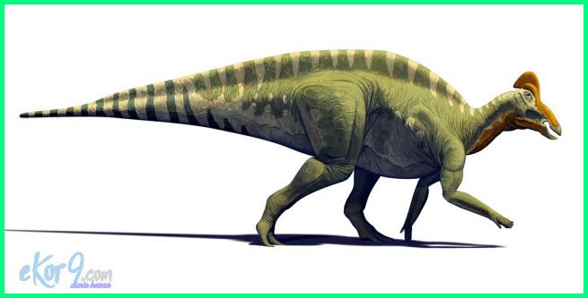 dinosaurus herbivora terbesar di dunia, dinosaurus terbesar air, dinosaurus terbesar apa, dinosaurus terbesar asli, dinosaurus terbesar.com, hewan dinosaurus terbesar, dinosaurus purba terbesar di dunia