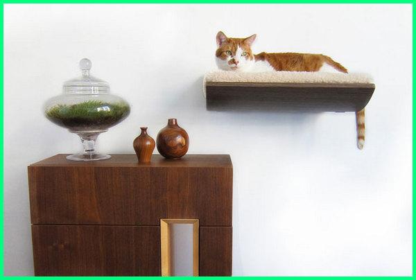 tempat tidur kucing dan anjing