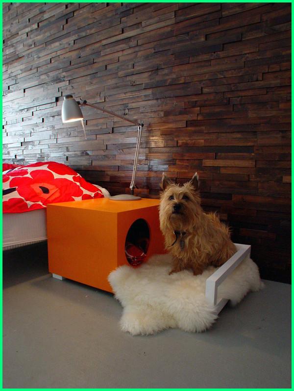 gambar tempat tidur anjing