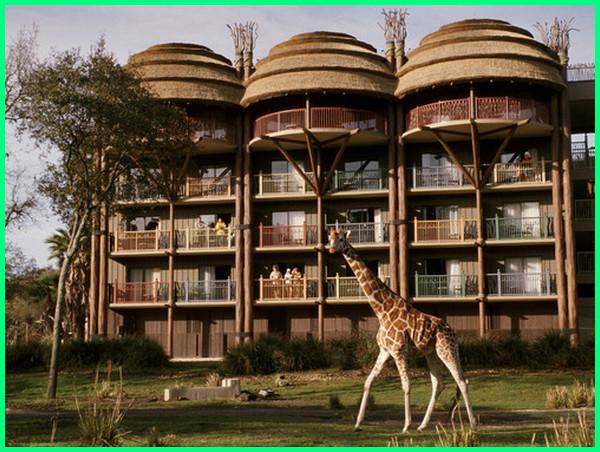 hotel untuk hewan, animals, petsathome