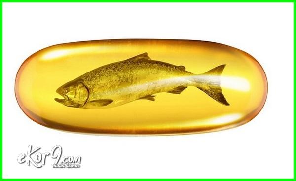 aturan minum omega 3 salmon, manfaat salmon omega 3 fish oil, harga minyak salmon, manfaat salmon omega 3 golden bear, jual minyak ikan salmon asli, ikan salmon murah