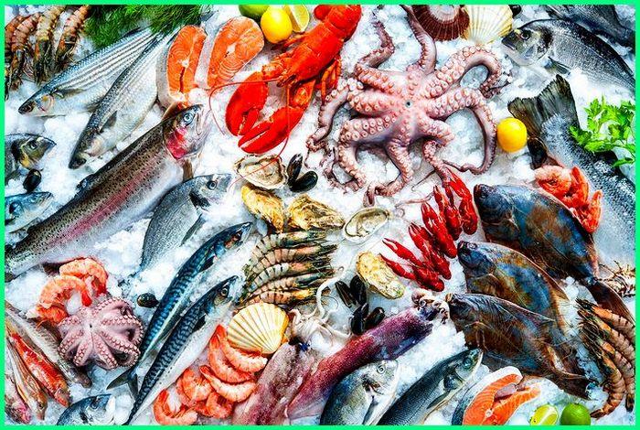 hewan yang paling banyak disukai, hewan yang banyak mengandung protein, hewan yang banyak manfaat, hewan paling banyak populasinya, hewan yang paling banyak di dunia