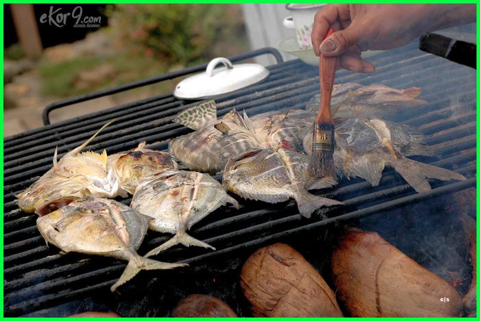 ikan laut yang paling enak dagingnya, ikan laut apa yang enak dibakar, ikan laut bakar enak, ikan laut yang enak buat dibakar, ikan laut yang enak dibakar, jenis ikan laut enak di bakar, ikan laut yang enak digoreng, ikan laut yg enak digoreng