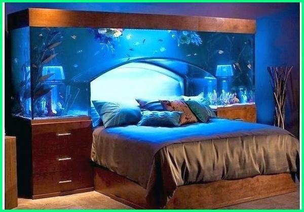 aquarium unik dan aneh, aquarium unik, akuarium berbentuk unik, contoh aquarium unik, foto akuarium unik, foto aquarium unik, gambar model aquarium unik, ide aquarium unik, lemari aquarium unik