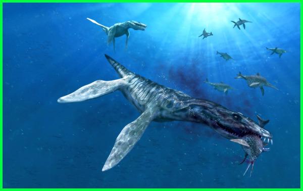 hewan laut terbesar yang pernah ada, hewan laut terbesar yang pernah hidup, binatang laut terbesar yang pernah ada, hewan laut terbesar yang pernah hidup di bumi, hewan laut terbesar yang pernah di temukan, binatang laut terbesar yang pernah ditemukan, hewan laut terbesar yang pernah ditemukan
