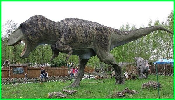 hewan purba terbesar yang pernah ada di bumi, hewan terbesar yang pernah hidup di bumi, hewan purba terbesar yang pernah ditemukan, foto hewan terbesar yang pernah ditemukan, hewan purba terbesar yang pernah hidup, hewan hewan terbesar yang pernah ditemukan