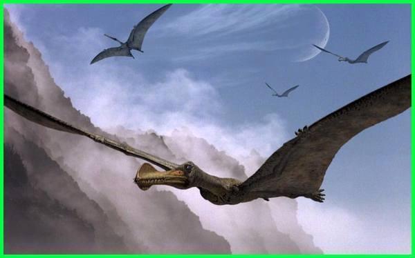 binatang terbesar di dunia yang pernah hidup, hewan terbesar yang pernah hidup di muka bumi, hewan terbesar yang pernah tertangkap, binatang terbesar yang pernah ditemukan, hewan terbesar yg pernah ada, hewan terbesar yg pernah ditemukan, binatang terbesar yg pernah ditemukan, 10 hewan terbesar yang pernah hidup di bumi
