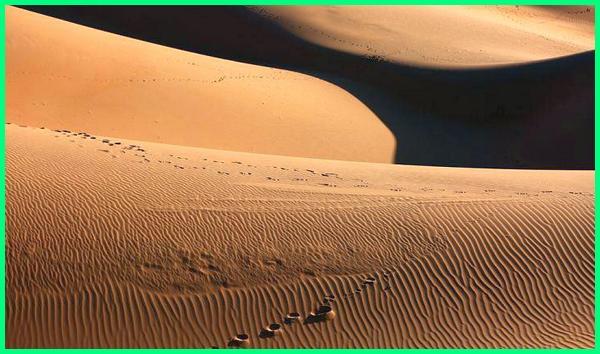 gurun pasir terbesar di asia adalah, gurun pasir terluas di asia adalah, gurun pasir di benua asia, nama gurun pasir di benua asia