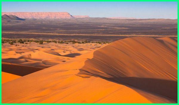 gurun pasir yang terluas di benua afrika, gurun pasir, gurun pasir yang terluas di benua afrika adalah, gurun pasir terbesar dan terluas di dunia letaknya di benua afrika, gurun pasir di afrika, gurun pasir afrika