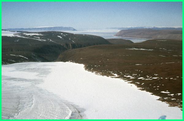 apa gurun terluas di benua,gurun apa yang terluas di dunia, gurun apa yang terluas, apakah gurun itu