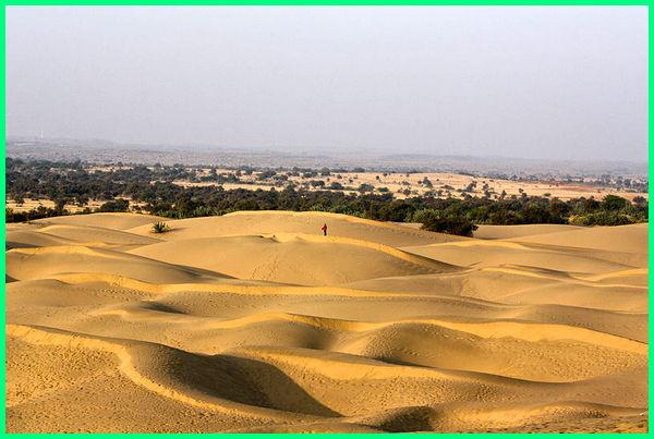 india gurun, gurun di india, gurun thar india, gurun terluas di india, gurun yang memisahkan india dan pakistan, gurun yg memisahkan india dan pakistan adalah, gurun yang memisahkan antara india dan pakistan