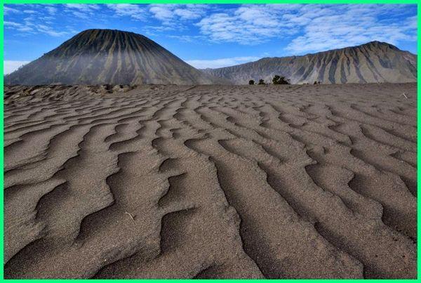 padang pasir jogja, padang pasir di jogja, padang pasir bromo, padang pasir berbisik, padang pasir.com, padang pasir gunung bromo, padang pasir terluas di indonesia