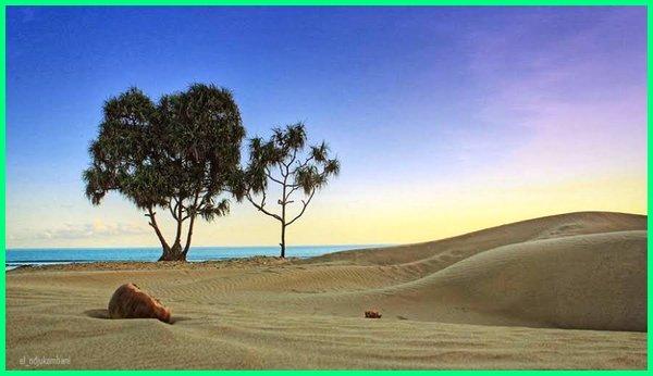 daerah padang pasir di indonesia