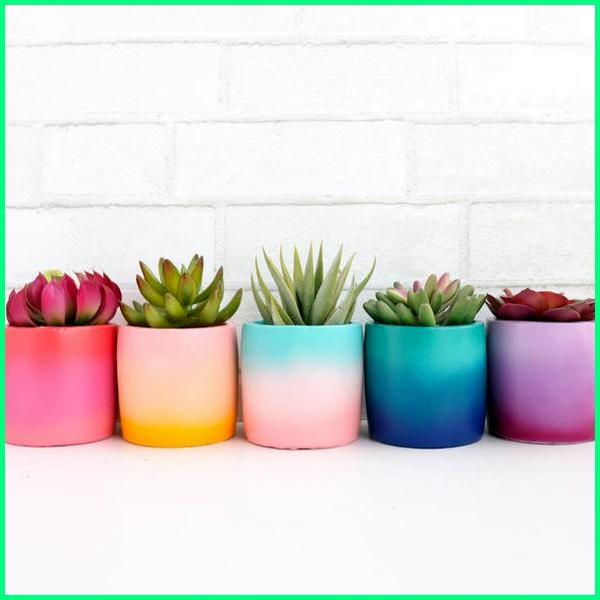 pot kecil warna warni, pot keramik putih kecil, pot kaktus unik, pot kaktus lucu, cactus garden pot, kaktus in pot, kreasi pot kaktus, tempat pot kaktus, pot untuk kaktus mini