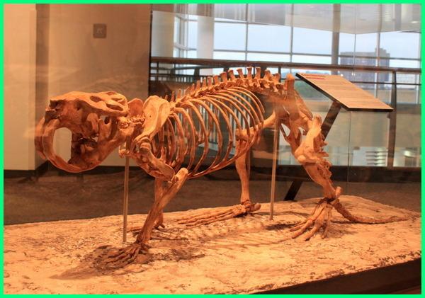tikus terbesar dalam sejarah, tikus paling besar masa lalu sepanjang masa