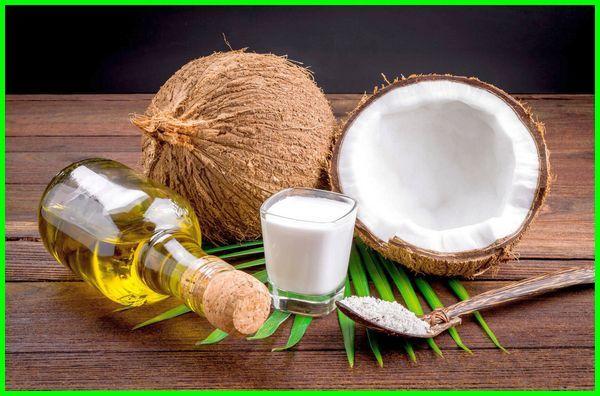 apa saja manfaat buah kelapa, apa saja manfaat yang diperoleh dari pohon kelapa, apa saja yang dapat dimanfaatkan dari pohon kelapa, apa kegunaan pohon kelapa, apa itu pohon kelapa, apa manfaat batang pohon kelapa