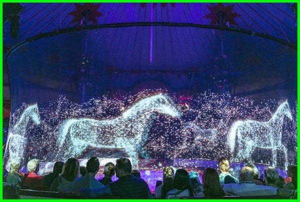 sirkus hologram, sirkus kuda, sirkus hewan terhebat di dunia, sirkus lucu, sirkus luar negeri, circus o, sirkus rusia 2019, circus show, sirkus terbaik di dunia, sirkus termasuk jenis pertunjukan, sirkus terbaik dunia, sirkus 2019-2020-2021