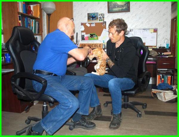 apa saja yang dilakukan dokter hewan, apakah dokter hewan mahal, berapa gaji dokter hewan, berapa biaya dokter hewan, berapa harga dokter hewan, berapa tarif dokter hewan, berapa biaya dokter hewan kucing, berapa biaya ke dokter hewan, dimana dokter hewan bekerja, apa saja yang dipelajari dokter hewan