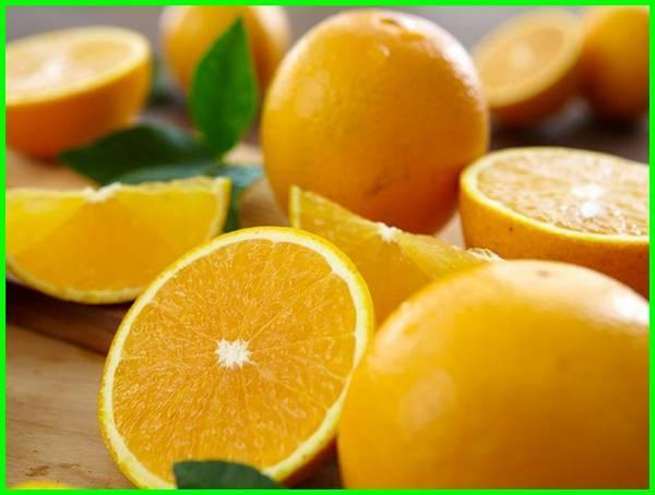 jeruk manis adalah, ciri jeruk manis, ciri2 jeruk manis, foto jeruk manis, gambar jeruk manis, jeruk impor manis, jenis jeruk manis