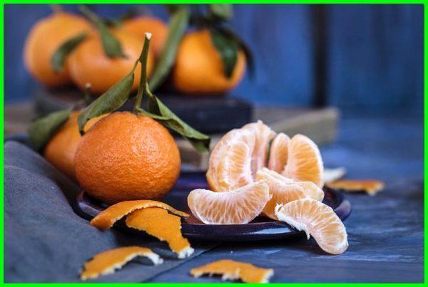 jenis jeruk manis unggul, jenis jeruk manis di indonesia, jenis jeruk manis unggulan, jenis jeruk yang manis, jenis jeruk kecil manis, jenis jeruk paling manis