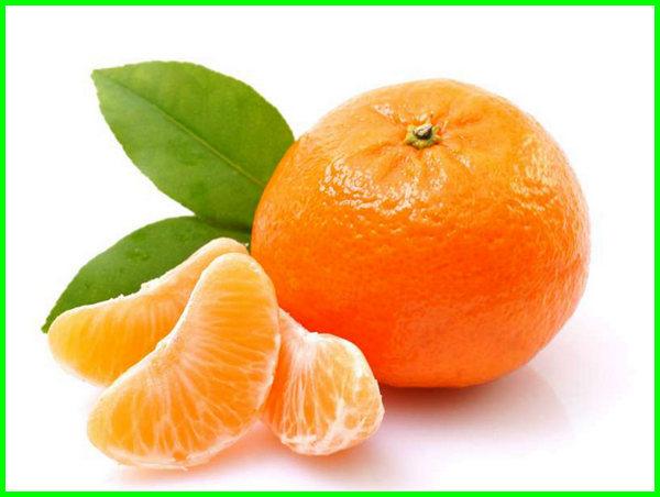 jeruk mandarin manis, jenis jeruk yang manis, jenis jeruk paling manis, jeruk manis, macam jeruk manis