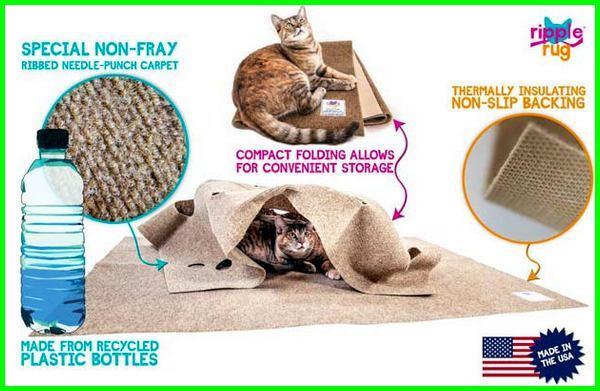 mainan cakar kucing, mainan favorit kucing, fungsi mainan kucing, mainan kucing gambar, mainan hewan kucing,jenis mainan kucing , mainan kesukaan kucing, mainan kucing tidak otomatis