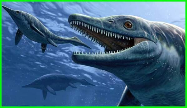 dinosaurus laut terganas, dinosaurus laut yang masih hidup, dinosaurus laut di jurassic world, dinosaurus laut terkuat, dinosaurus laut terbesar, penampakan dinosaurus di laut, hewan dinosaurus laut, macam dinosaurus laut, laut zaman dinosaurus