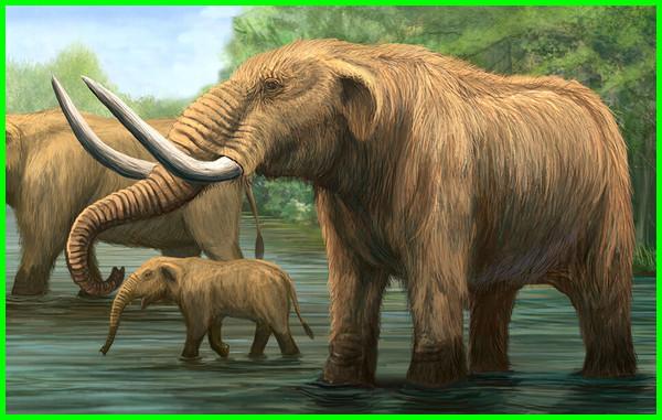 daftar hewan zaman es, gambar hewan zaman es, foto hewan zaman es, hewan yang hidup di zaman es