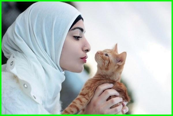 memelihara kucing dalam islam, memelihara kucing menurut islam, memelihara kucing dlm islam, manfaat memelihara kucing islam, memelihara kucing bagi islam, hukum memelihara kucing islam, memelihara kucing hitam menurut islam, memelihara kucing menurut agama islam, manfaat memelihara kucing menurut agama islam, hukum memelihara kucing dalam agama islam, hukum memelihara kucing menurut agama islam, anjuran memelihara kucing dalam islam